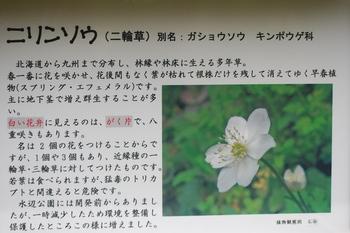 DSC_8093.JPG